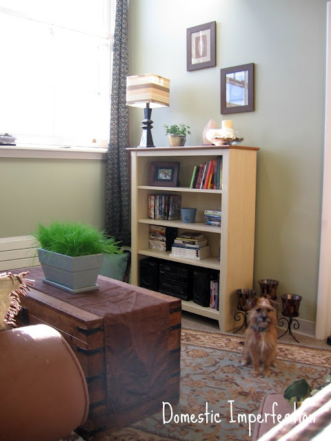 earthy apartment