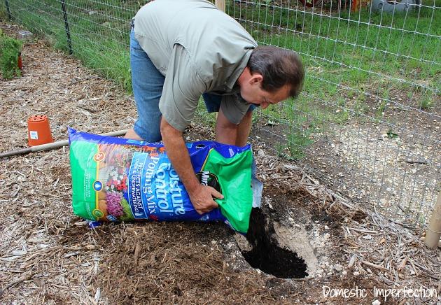 Miracle Gro moisture control soil