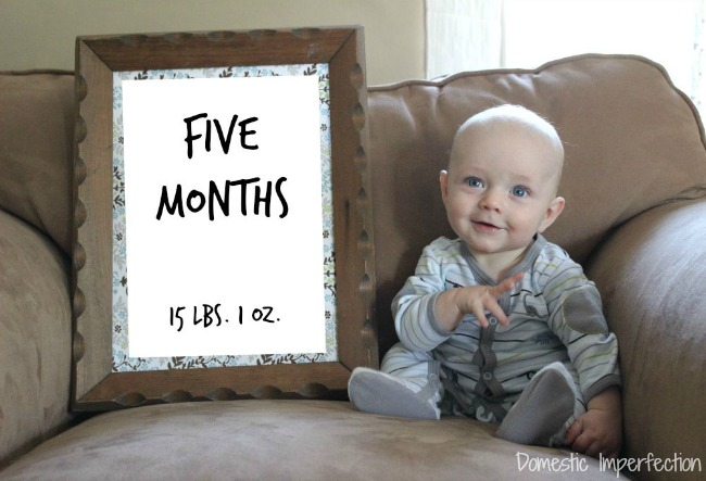 Judah five months edit