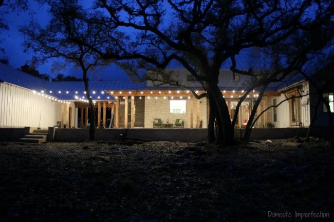 well-lit backyard